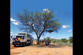 Ultimate African Adventure 46 Day tour