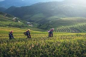 Ultimate Southeast Asia & The Majestic Mekong  with Sapa, Hue & Danang  Southbound tour
