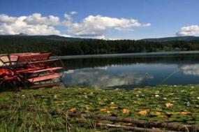Glacier National Park & the Canadian Rockies with the Calgary Stampede tour