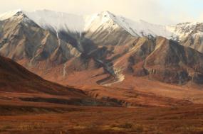 Family Alaska tour