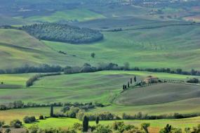 Traditional Tuscan Experience tour