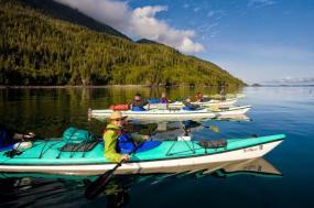 Blackfish Waters Orca Kayak Tour tour