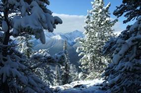 National Parks: Canadian Rockies, Glacier & Yellowstone tour