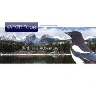 Kaiyote Tours