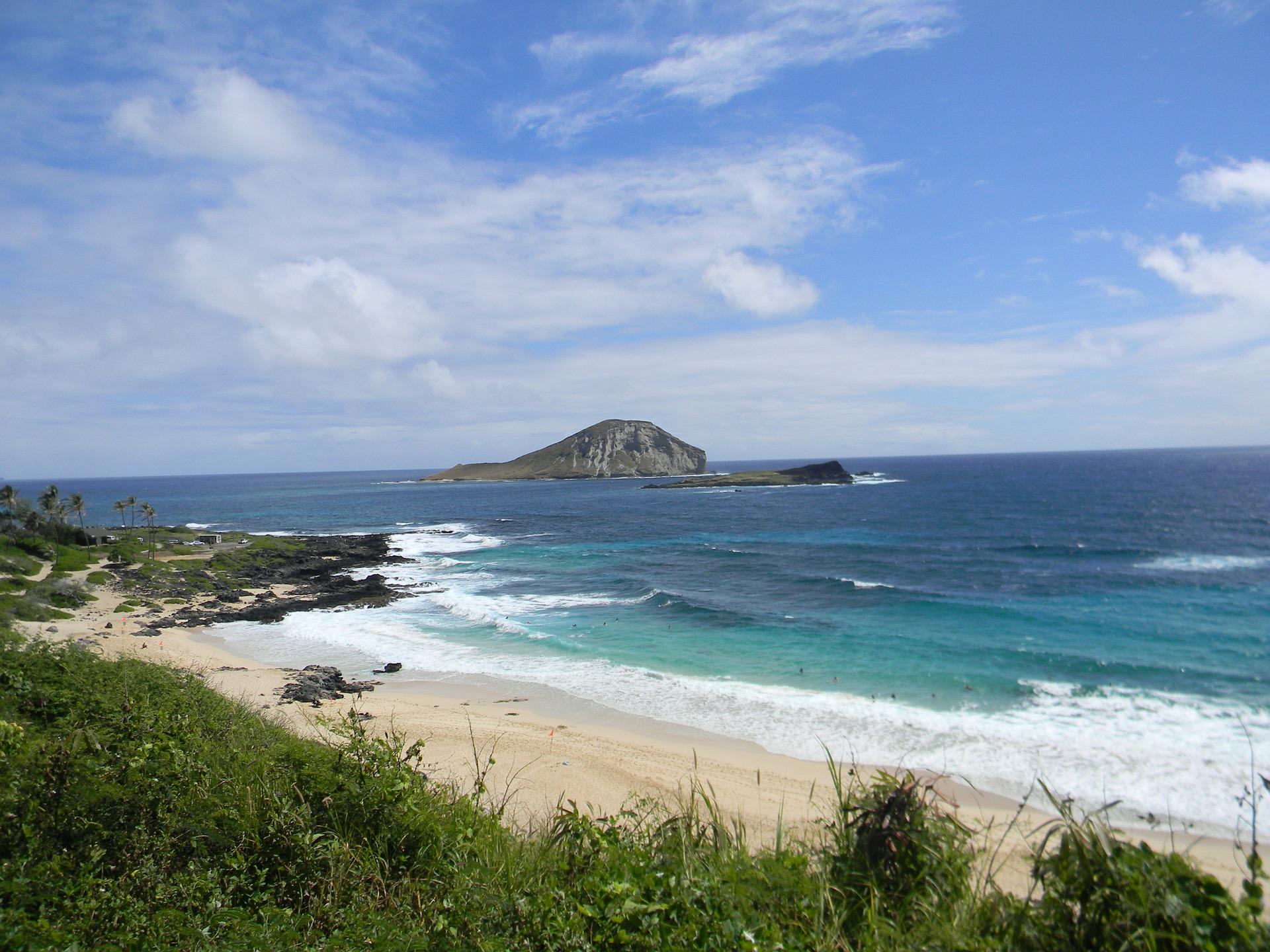 Hawaiian Seascapes tour