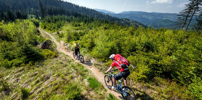 Cyclists in Czech Republic