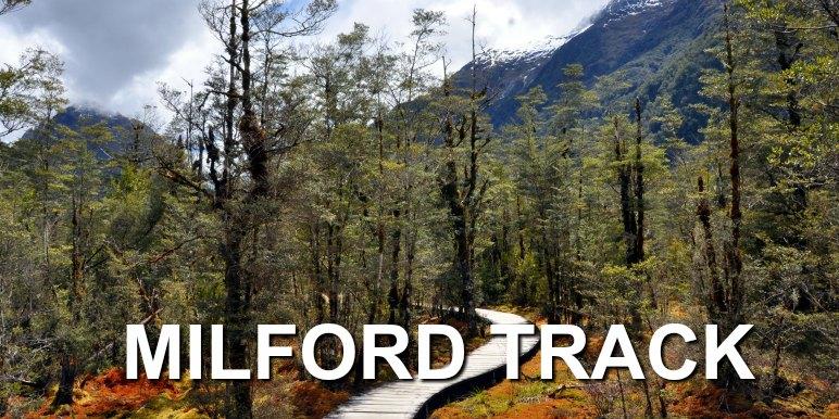 Milford Track, New Zealand