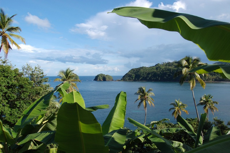 Dominica Island in the Caribbean
