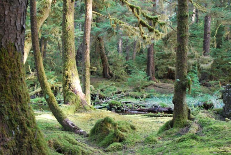 Haida Gwaii