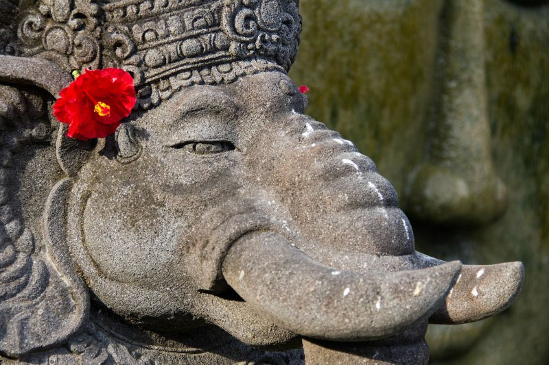 Elephant, Bali