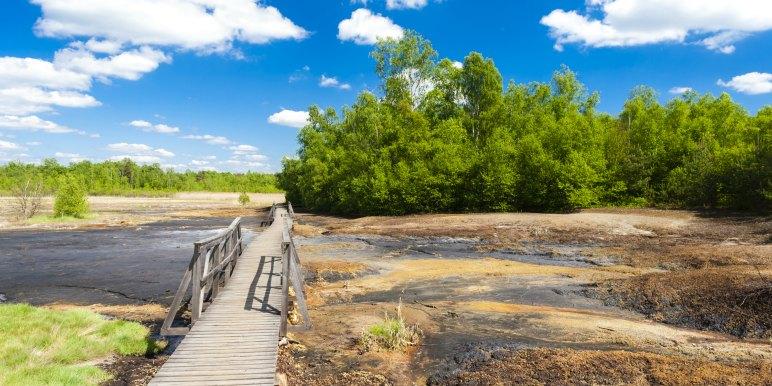 Soos Natural Reserve, Czech Republic