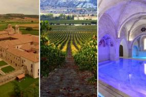 Ribera del Duero: The Spanish paradise for wine & food lovers