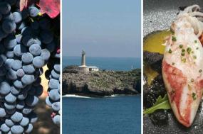 Combine Ribera del Duero world-famous wines with the Pearl of the Cantabrian Sea and Burgos' impressive Cathedral