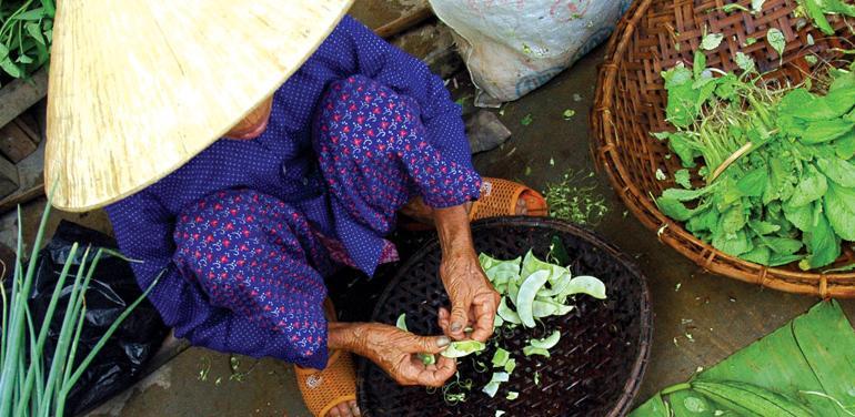 Real Food Adventure Vietnam & Cambodia tour