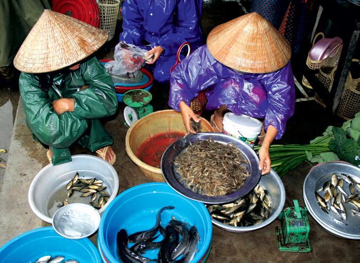 Angkor Wat Hanoi Real Food Adventure Vietnam & Cambodia Trip