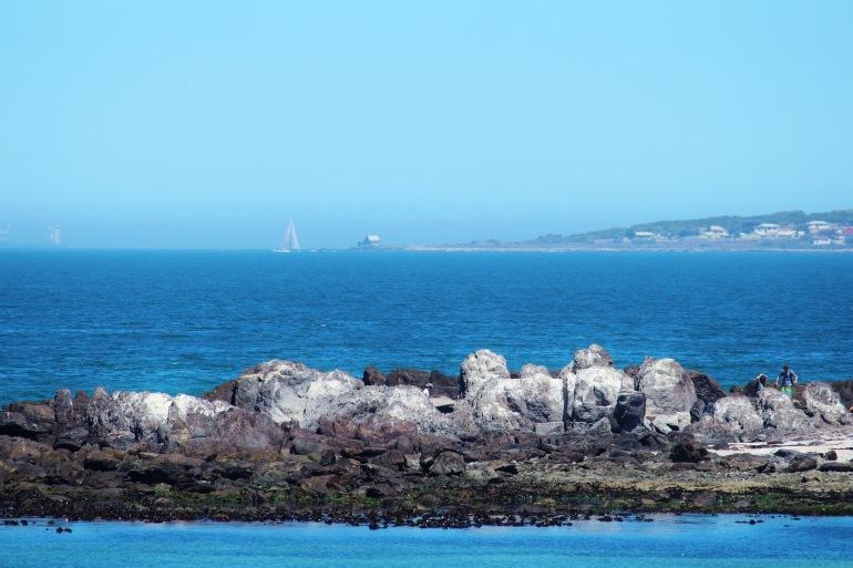 Ship on a sea shore-Robben Island-Africa_628892_P