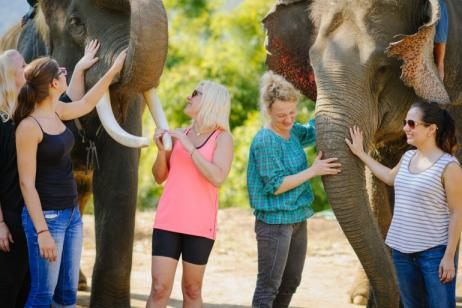 Thailand – The Elephant Conservation Expedition tour