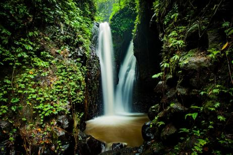 Amazon River Cruises tour