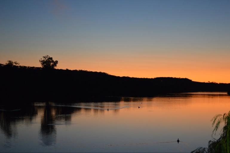 Sunset in Murray River-Australia-1733949_1920_p