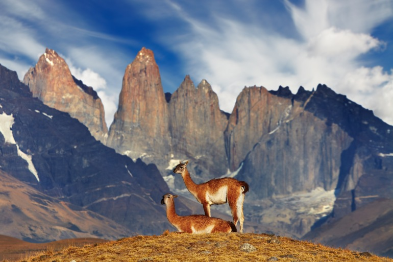 Andes Mountains El Calafate Best of Patagonia 9 Days Trip