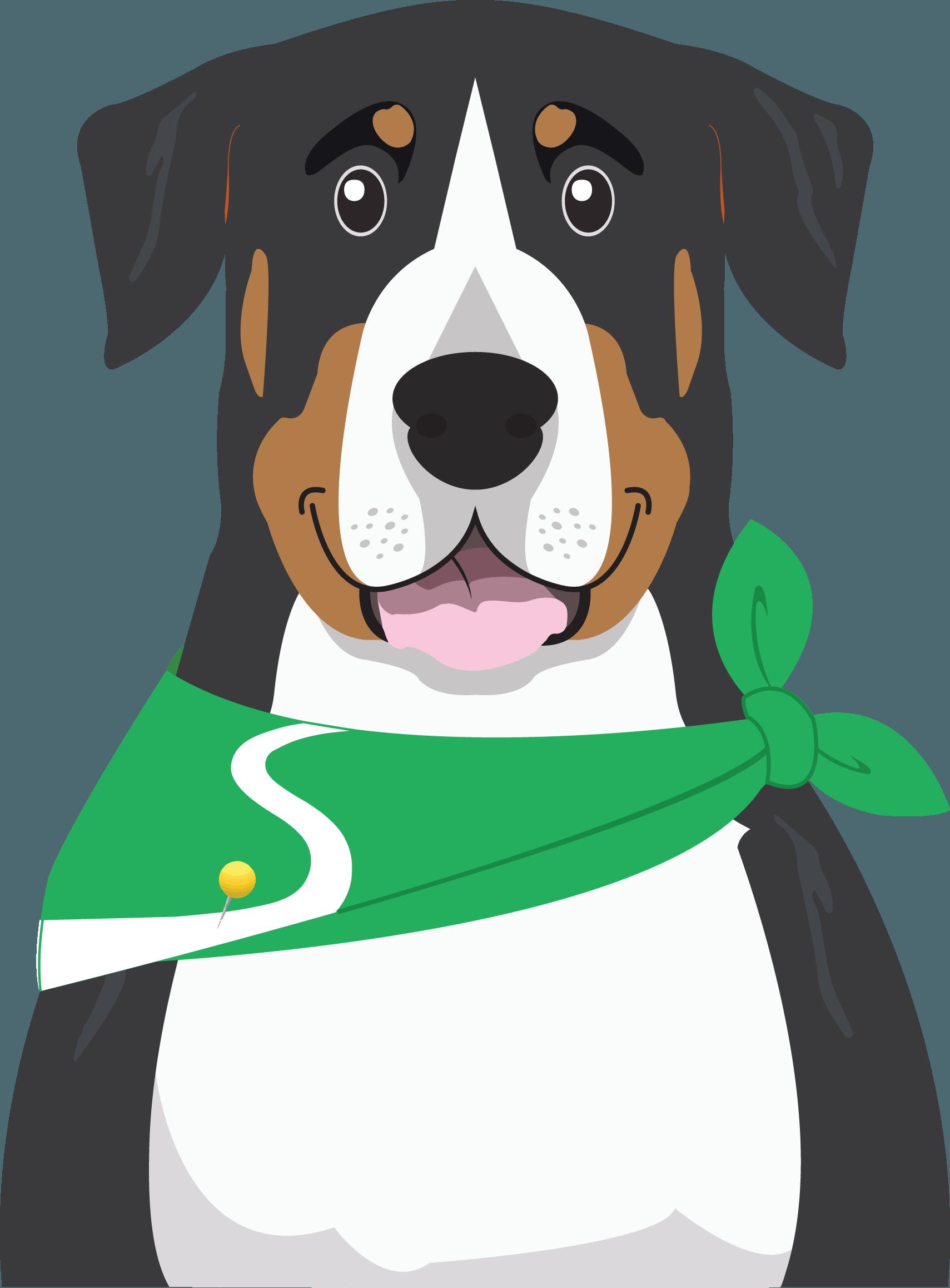 Rover, Stride Travel Guide Dog
