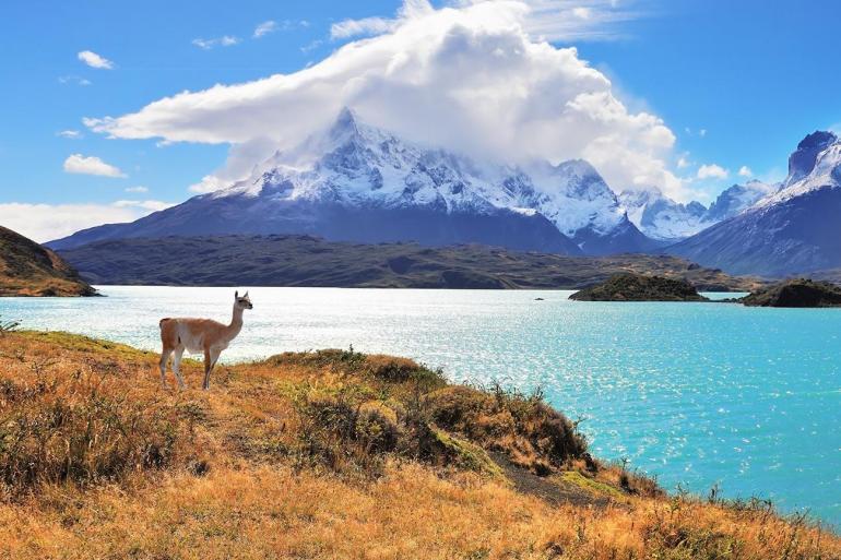 Wonders of Patagonia tour