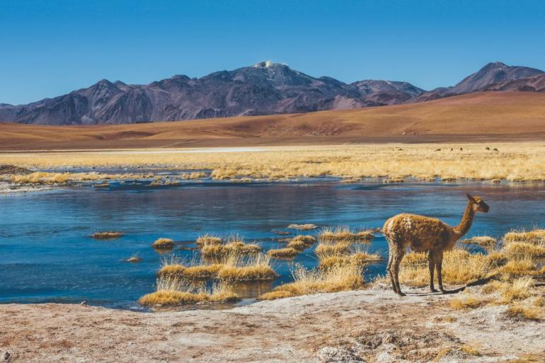 Best of Chile from Atacama to Patagonia - Summer 2021 tour