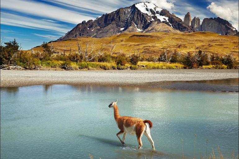 Buenos Aires El Calafate Patagonia Wilderness Trip