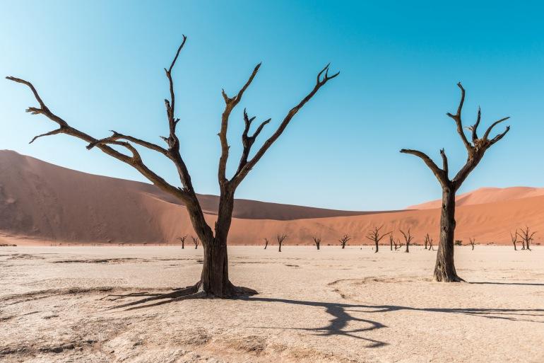 Skeleton Coast National Park Windhoek Namibia Desert & Dune Trip