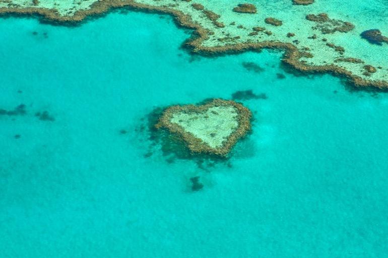 Great Barrier Reef_Australia_1492445_P