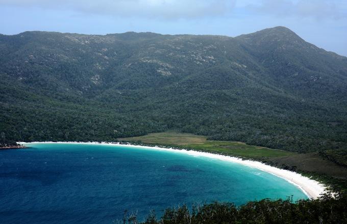 Wild Tasmania tour