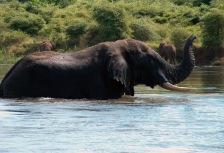 Zambia Attractions