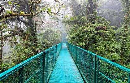 Monteverde Cloud Forest Attractions