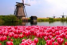 Netherlands Attractions