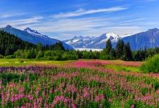 Alaska Attractions
