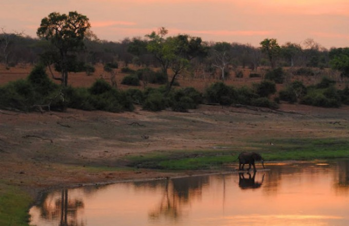 Grand South Africa Safari tour