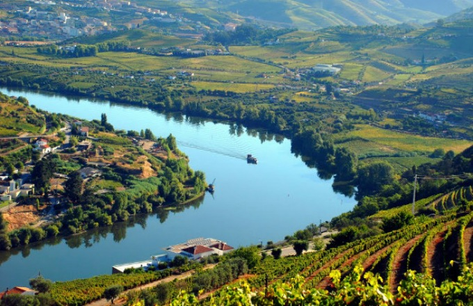 Enticing Douro  tour