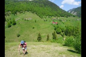 Carpathian Walking & Bears tour