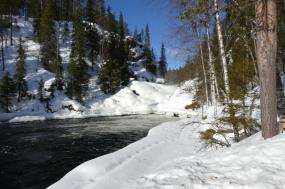 Cross-country skiing in Oulanka National Park