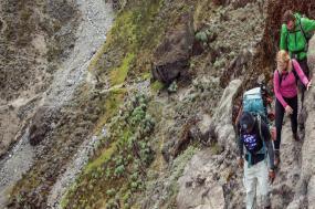 Kilimanjaro – Machame Route & Serengeti Adventure tour