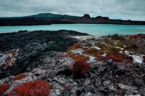 Galápagos — North, Central & South Islands aboard the Estrella del Mar tour