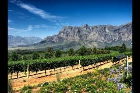 Kingdom of Swaziland + Cape Escape tour