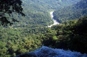 Jungle Hiking - El Bejuco Waterfall (2 days) tour