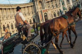 Explore Central Europe tour