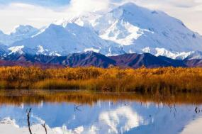Majestic Alaska with Glacier Discovery Cruise Oceanview Stateroom Summer 2018 tour