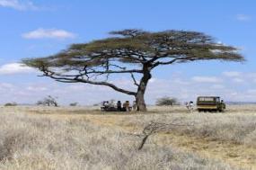 Kenya: A Timeless Safari