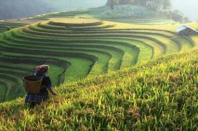 Ultimate Southeast Asia & The Majestic Mekong with Sapa  Northbound