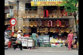 Indochina Encounter + Good Morning Vietnam! tour