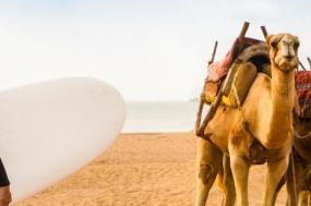 Morocco Mountains and Beaches tour