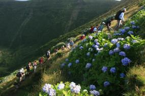 Walking in the Azores  tour